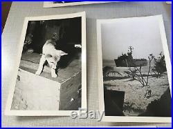 Vtg Vietnam Korean War Military Photos 12 Photo Lot Collection Soldier